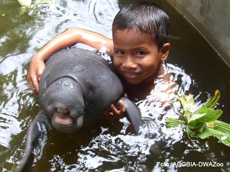 CREA - Centro de Rescate Amazónico