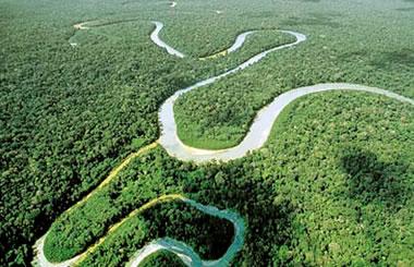 Majestuoso Amazonas